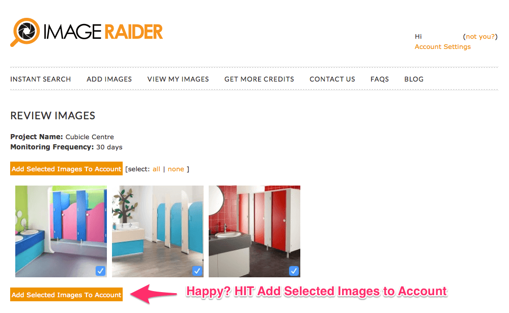 Image Raider - Review your images